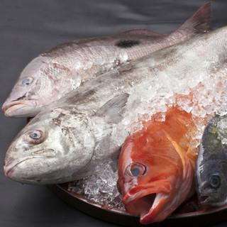 産地直送の『鮮魚』にこだわっています。