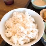 プラスロシェ - 麦ご飯