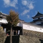95005840 - 和歌山城の目の前にあります(県庁前)
