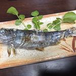 95008341 - 川魚。塩加減ばっちり、クレソンが良いアクセントです。