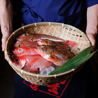 朝採れ!ぴちぴち新鮮!豊洲直送鮮魚