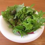 95036755 - 丹波から届けられた有機野菜のサラダ