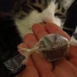 麺屋 海嵐 - レジ前のチョコは貰うw