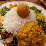 Curry シバ - 本体