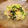 ビストロチャイナ 蜜柑 - 料理写真:天然鯛のカルパッチョ