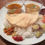 山食音 - 南インドカレー定食、一回