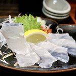 居酒屋 大河 - 長崎県産クエ