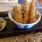 95228824 - 天ぷらの下にはご飯が…無い!(/)←こんな感じのご飯の盛りでした