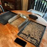 自家焙煎 美麻珈琲 - 手で一つ一つ豆の選別をしているところだったようでした