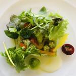 95334207 - 野菜のテリーヌ