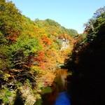 カフェ・ルーラル - オマケ・岩谷観音付近の紅葉と岩木川