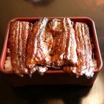 うなぎのまつ嘉 - 超特大鰻が一尾半