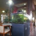 サンパール - いろんな魚が泳ぐ店内の様子
