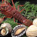 海の幸 魚虎 - 料理写真:生け簀の魚介
