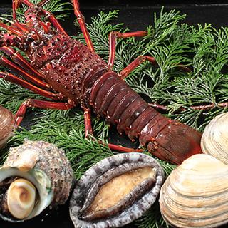 伊勢湾の幸と季節の滋味◎コースでお届けする、本当のお料理。