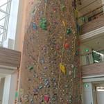 95479530 - 12.5mの壁