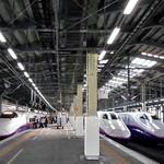 駅弁屋 - 【参考】E2の並ぶ新幹線ホーム