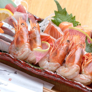 鮮魚を満喫!