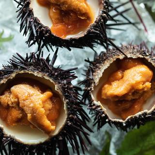 ワクワクする魚介料理が満載◆シェフ自慢の雲丹プリン!