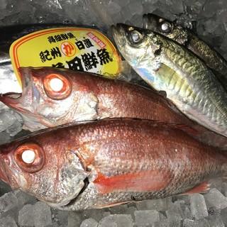 新鮮な魚を皆様にお届け!!