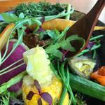 HappySpiceCafe - 無農薬野菜と黒毛和牛のキーマカレー(森)