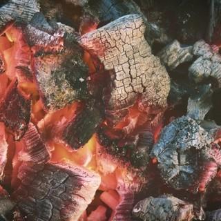 【焼き方のこだわり】備長炭で焼き上げる国産ホルモン