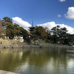 95738306 - 猿沢池から見る興福寺