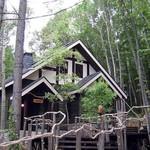 95762507 - 森の中の一軒家
