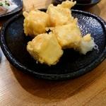 95769279 - 豆腐の天ぷら