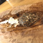 米とサーカス - 大ヤモリの食後
