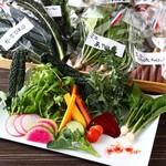 肉と野菜と マルセン24 - 契約野菜
