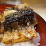 Kawayodo - 鰻皮目