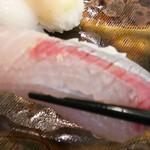 玄海鮨 - カンパチです