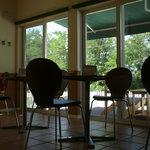 ドッグカフェ ミント - 内観写真:店内テーブル席