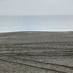 廻転寿司 海鮮 - おまけ。三浦海岸。