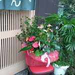 食事処 おしゃまんべ - 入口脇には、花が。。。