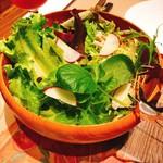 ICARO - 料理写真:季節の菜園風サラダ