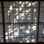96096219 - 障子に映る木々