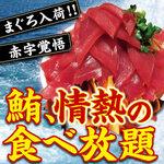 赤字覚悟!!【鮪、情熱の食べ放題】