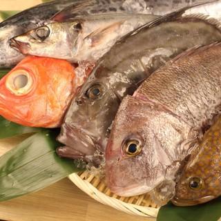 厳選した鮮魚は産地直送。新鮮な旬の味を是非ご堪能ください。