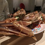 紀茂登 - 間人蟹