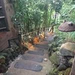 96230862 - 階段を上がって離れへ、雨模様も最高の風情