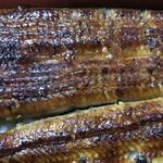 みや川 - 共水鰻重特上