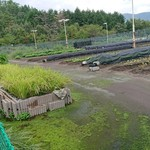 京都・烟河 -