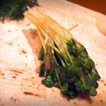 鮨ふるかわ - カイワレ大根の昆布締め