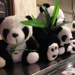96561496 - 店内のパンダ
