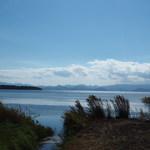 タロカフェ - 猪苗代湖
