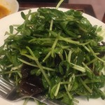 jundentoushisenkateiryourisempinshambekkan - 豆苗とキクラゲのしゃきしゃき和えサラダ