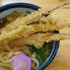 麺工房こうき - 料理写真:ごぼう天うどん650円
