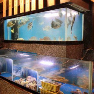 直送されたお魚は店内の生簀にいるので鮮度抜群です!